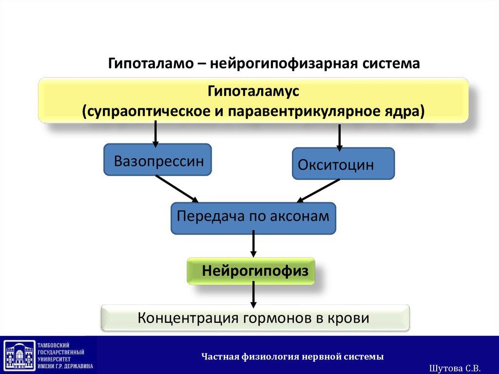 free international hrm a cross cultural approach