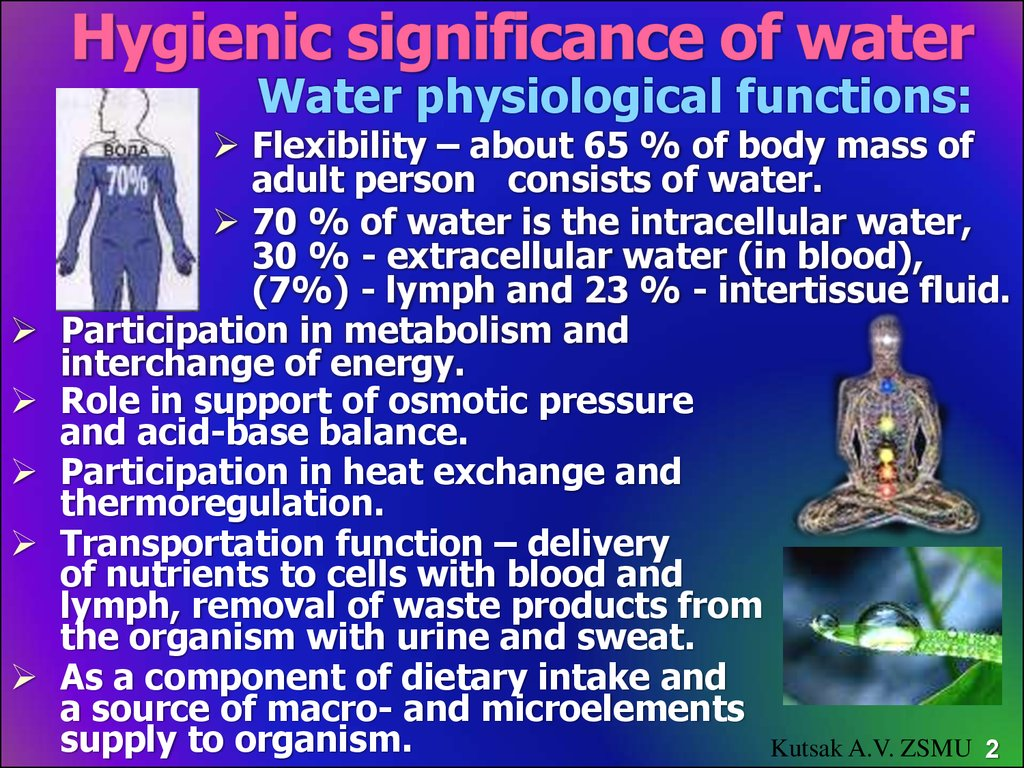 Hygienic significance of water