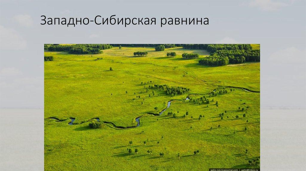 Картинки западно сибирские равнины
