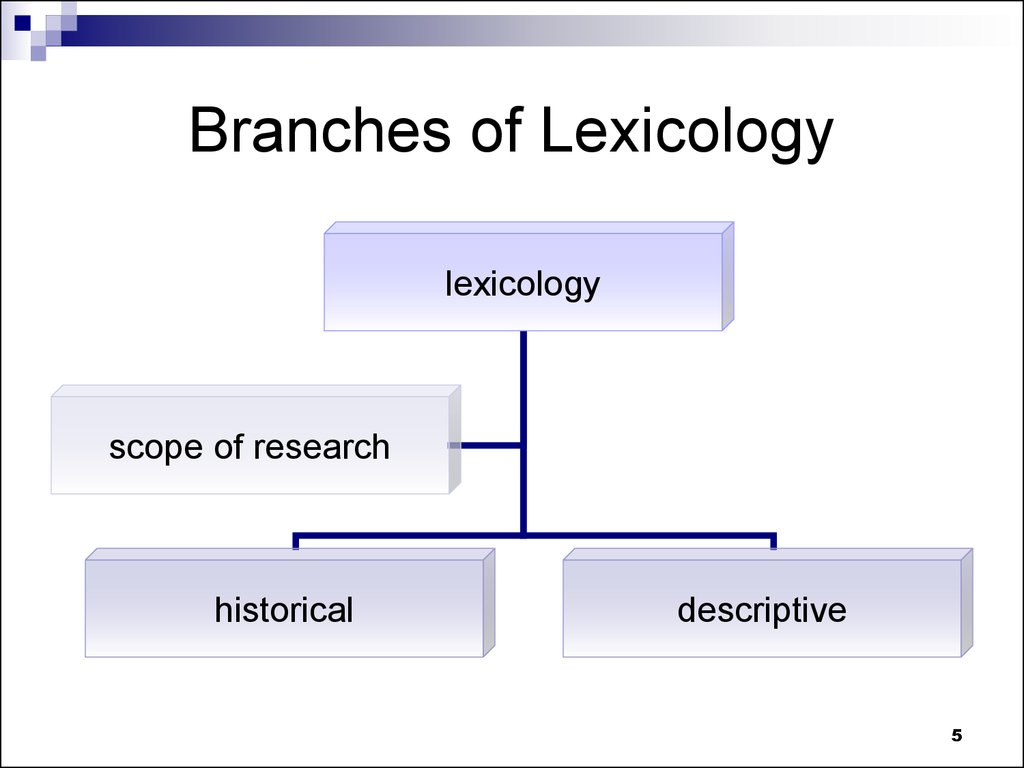Branches of Lexicology