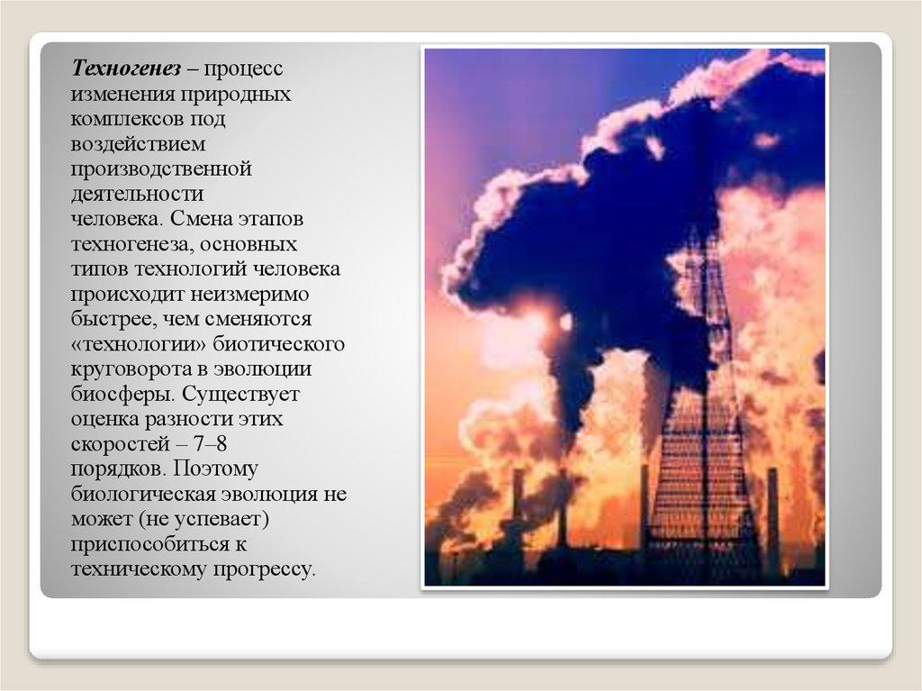 Антропогенные воздействия на окружающую среду эссе 9220