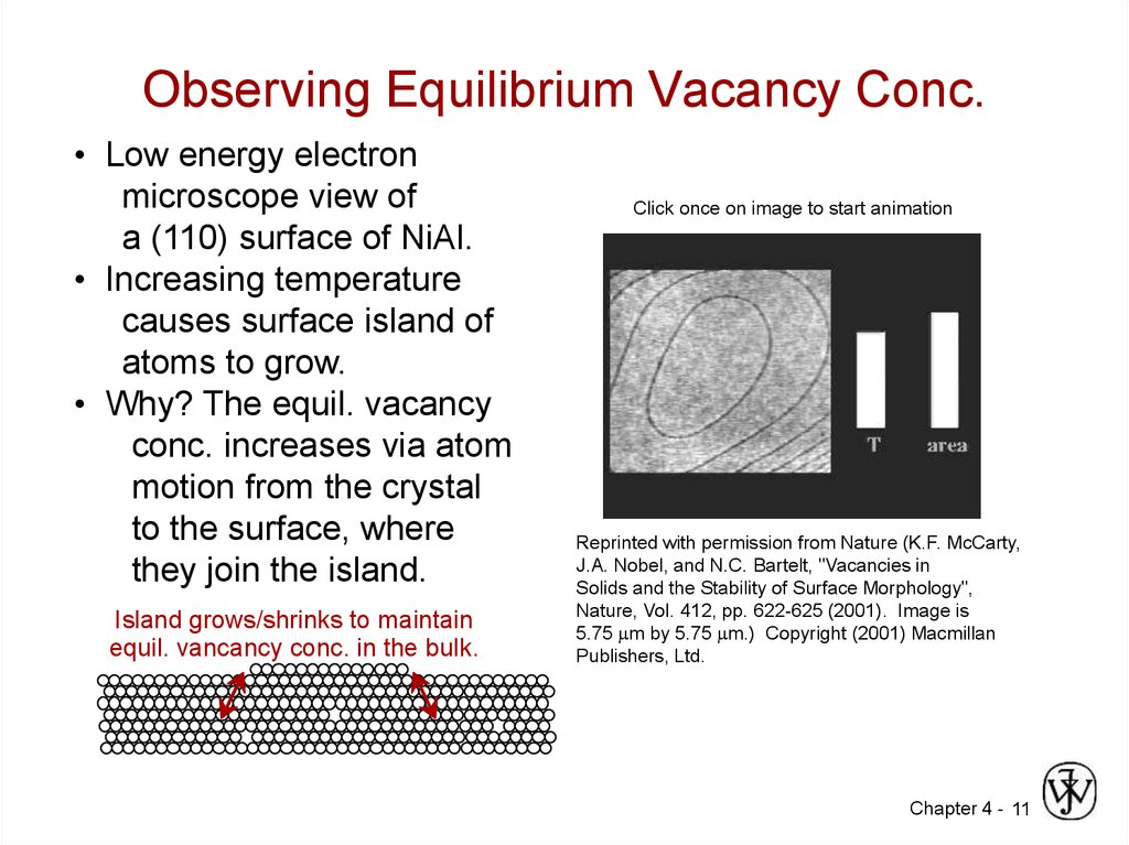 Observing Equilibrium Vacancy Conc.