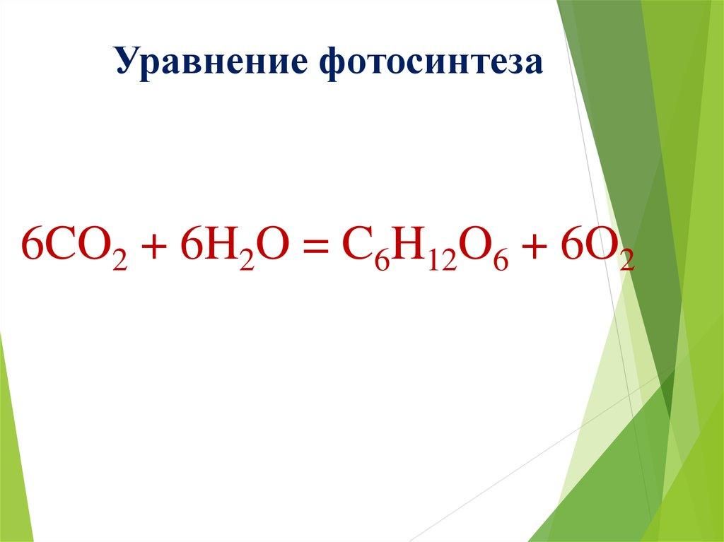 Сравните фотосинтез и клеточное дыхание него