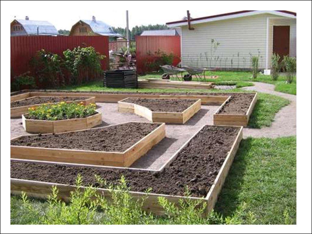 Сад и огород своими руками не как у всех: интересные…