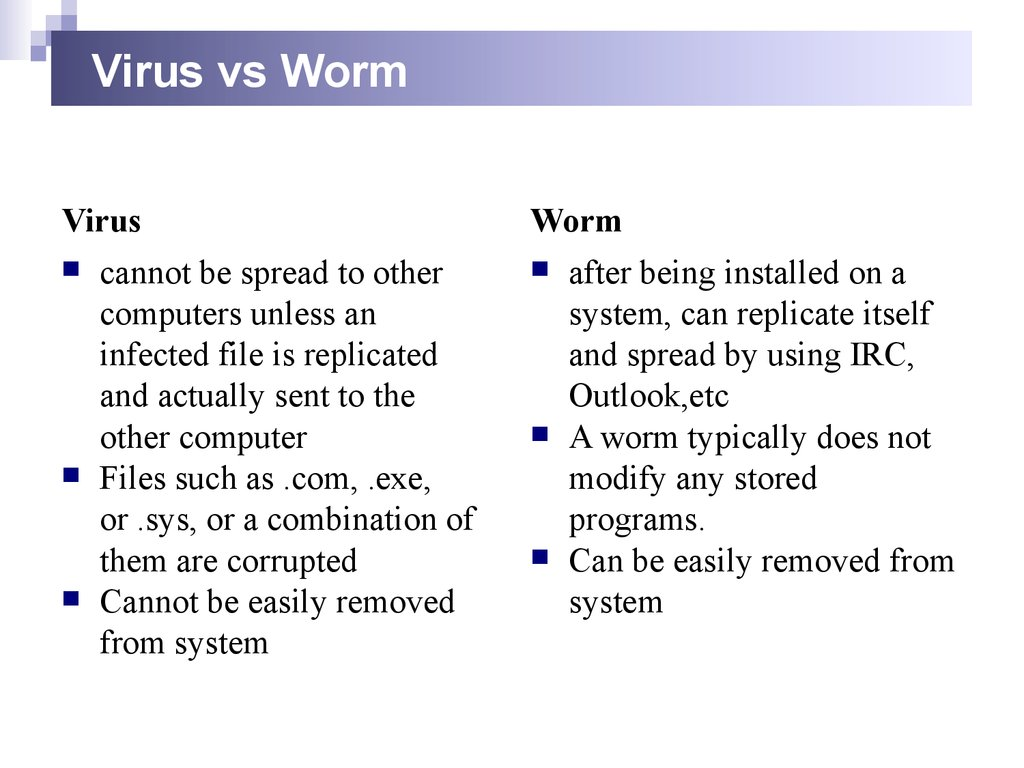 Virus vs Worm