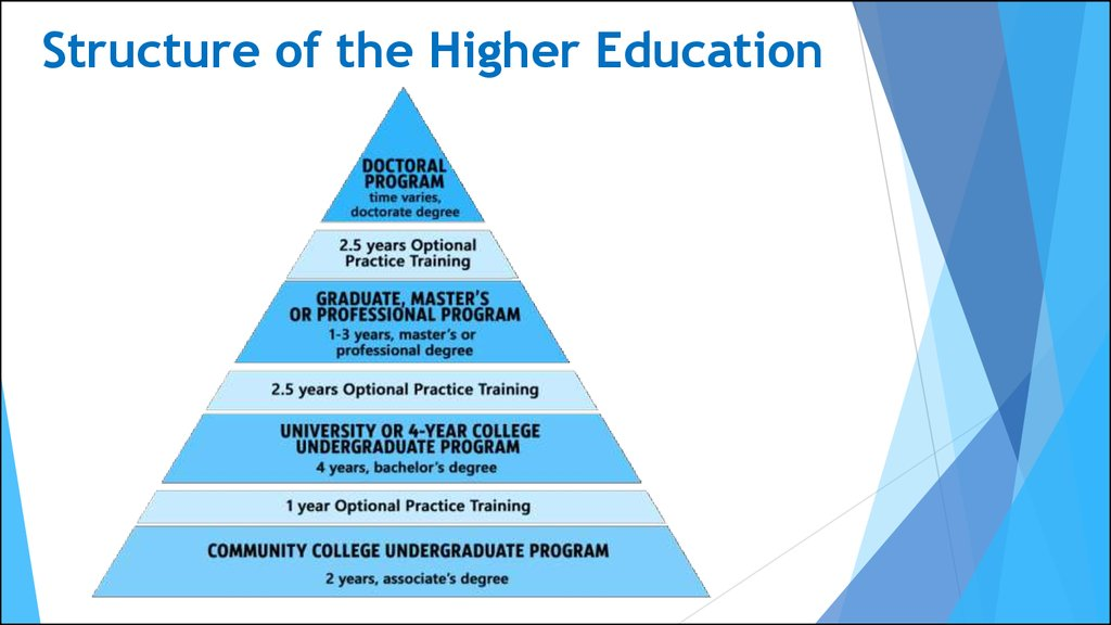 Structure of the Higher Education