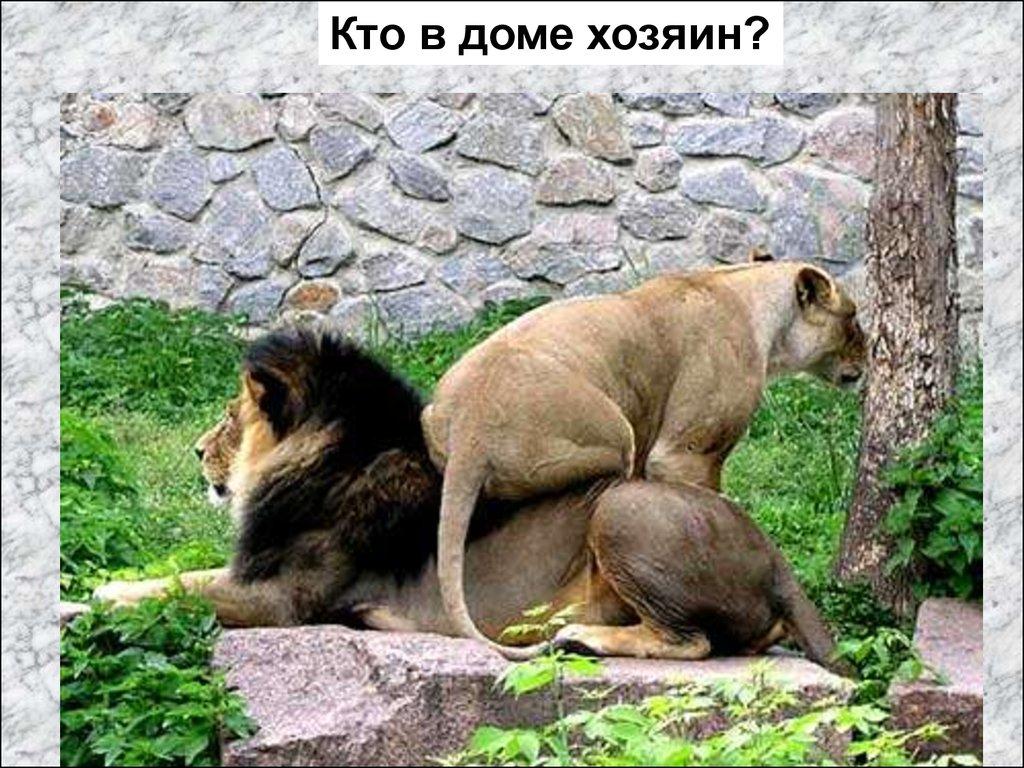 русский извращенец