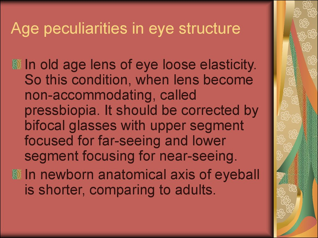 Age peculiarities in eye structure