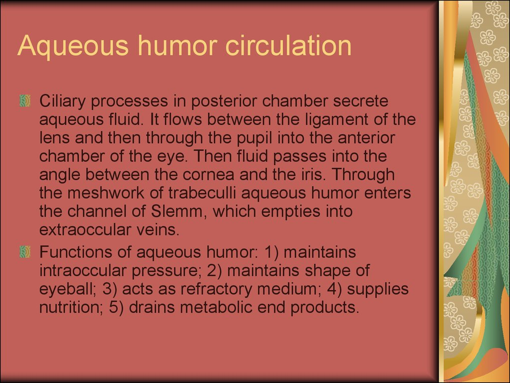 aqueous humor formation essay One such paper appeared in the april 1935 issue of the journal of the american chemical society when the aqueous humor does in the formation of a white.