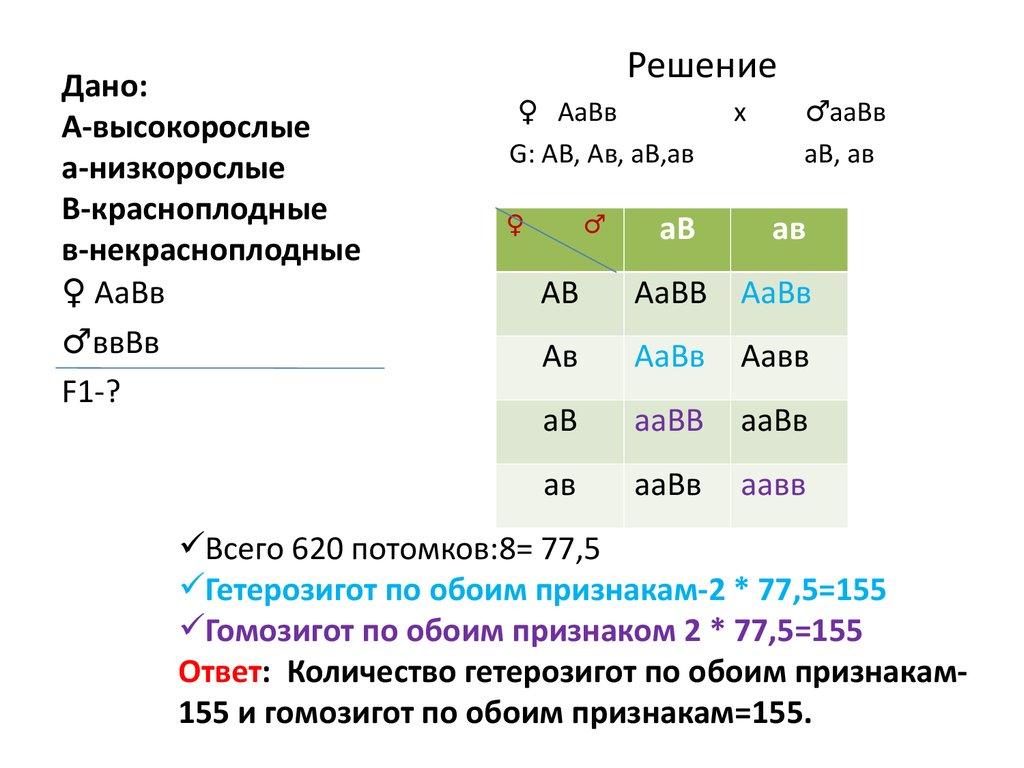 Генетика решение задач с объяснением придумать задачи на проценты с решением 6 класс