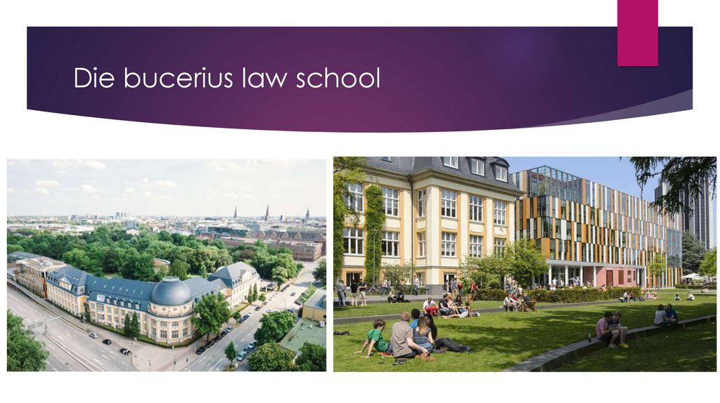 Die bucerius law school