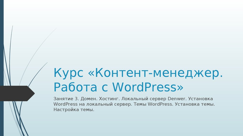 Курс «Контент-менеджер. Работа с WordPress»