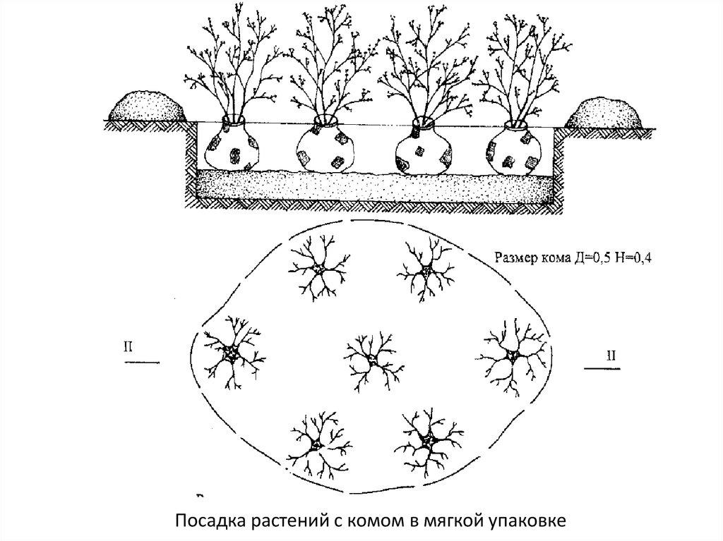 Схема посадки картинки обочины для