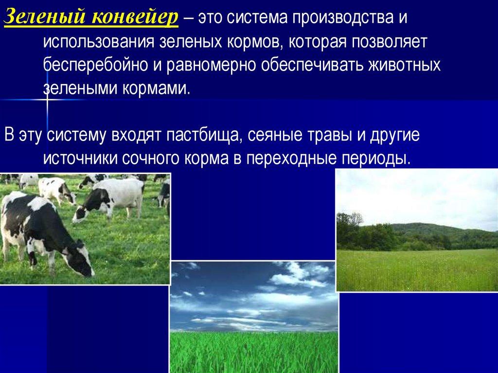 Зеленый конвейер для коров клинкер транспортер