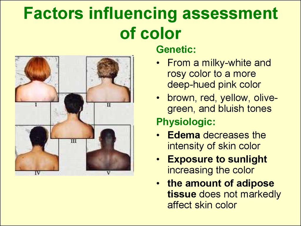 Factors influencing assessment of color