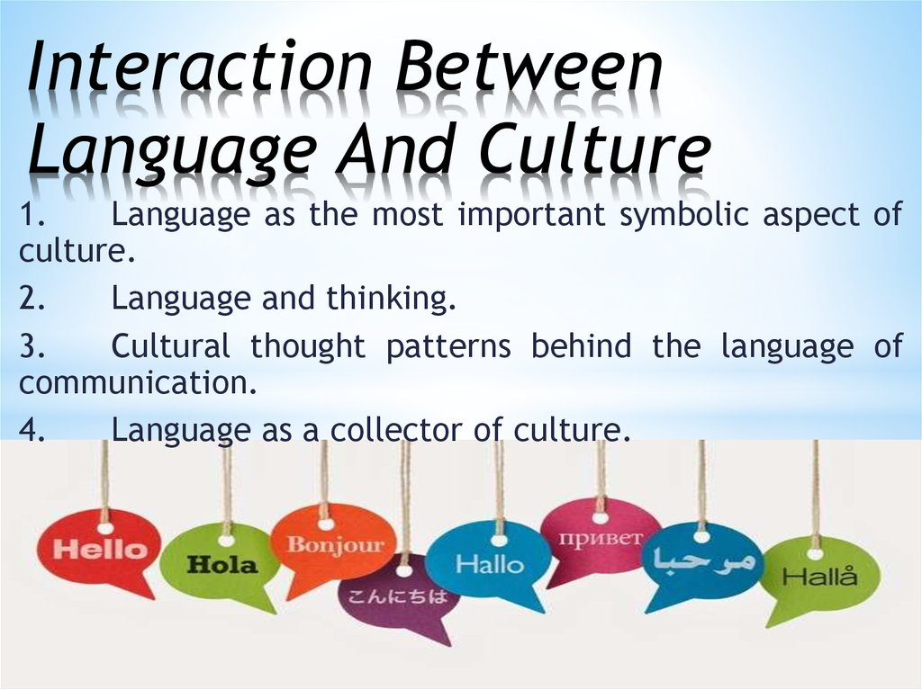 Interaction Between Language And Culture