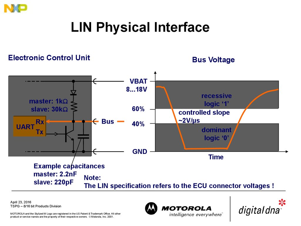 LIN Physical Interface