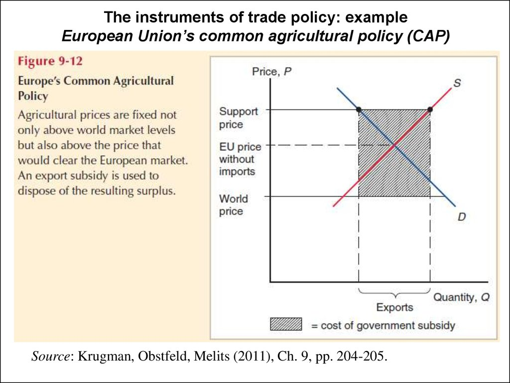 The instruments of trade policy: example European Union's common agricultural policy (CAP)