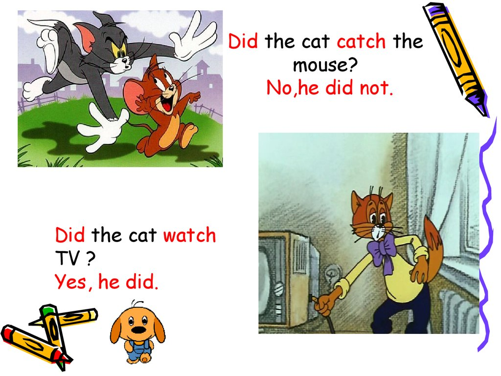Did the cat catch the mouse?