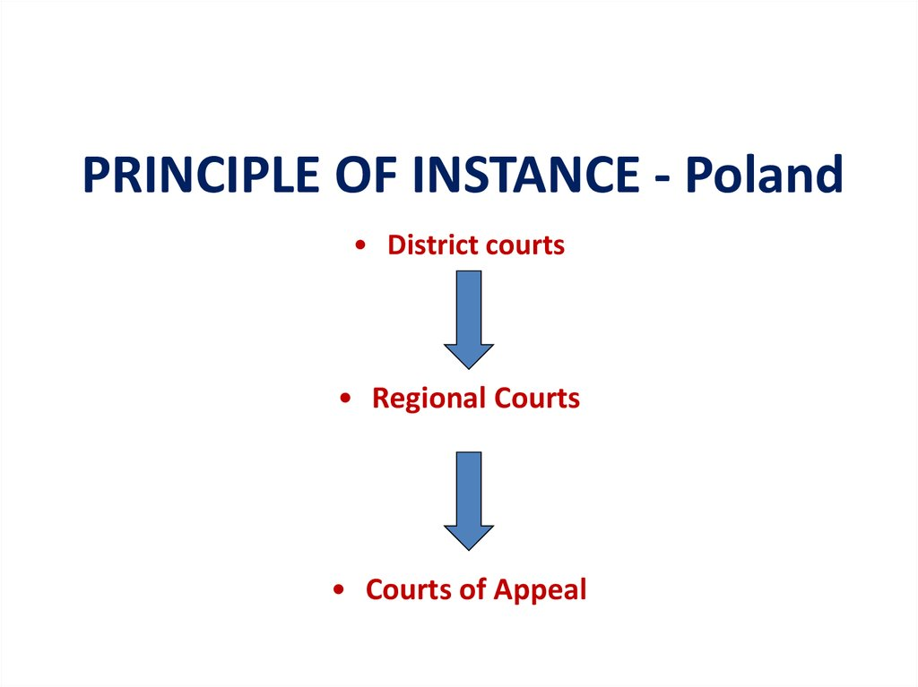 PRINCIPLE OF INSTANCE - Poland