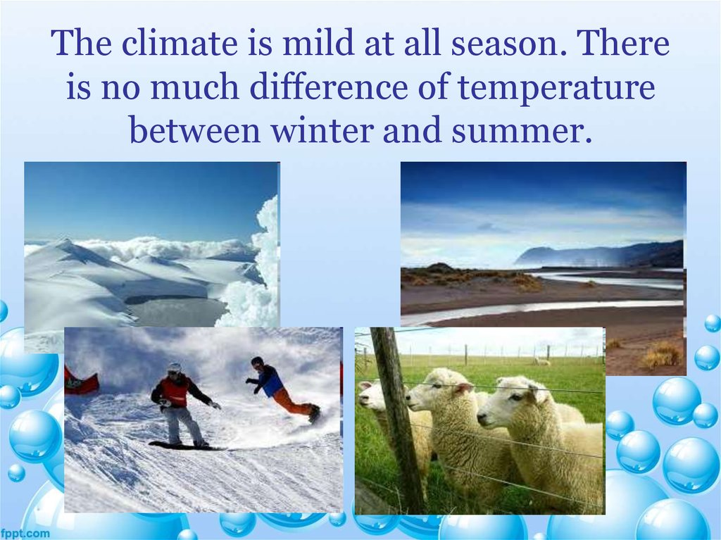 summer and winter essay Both summer and winter are the two of four seasons in the world in summer, the view of plants is beautiful as the same in winter even though there are several similarly points between summer and winter, but there are still have three main different things which are clothing, activities and food.