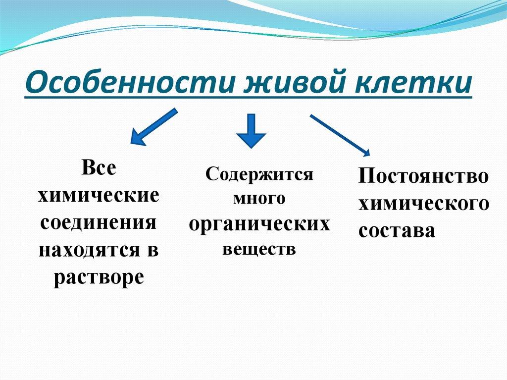 Особенности живой клетки