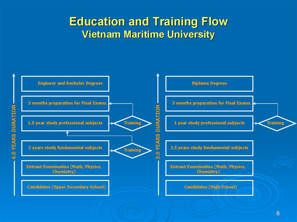 Education and Training Flow Vietnam Maritime University