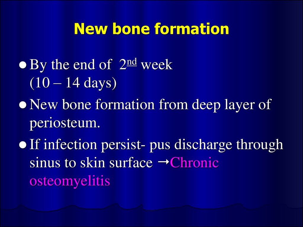 New bone formation