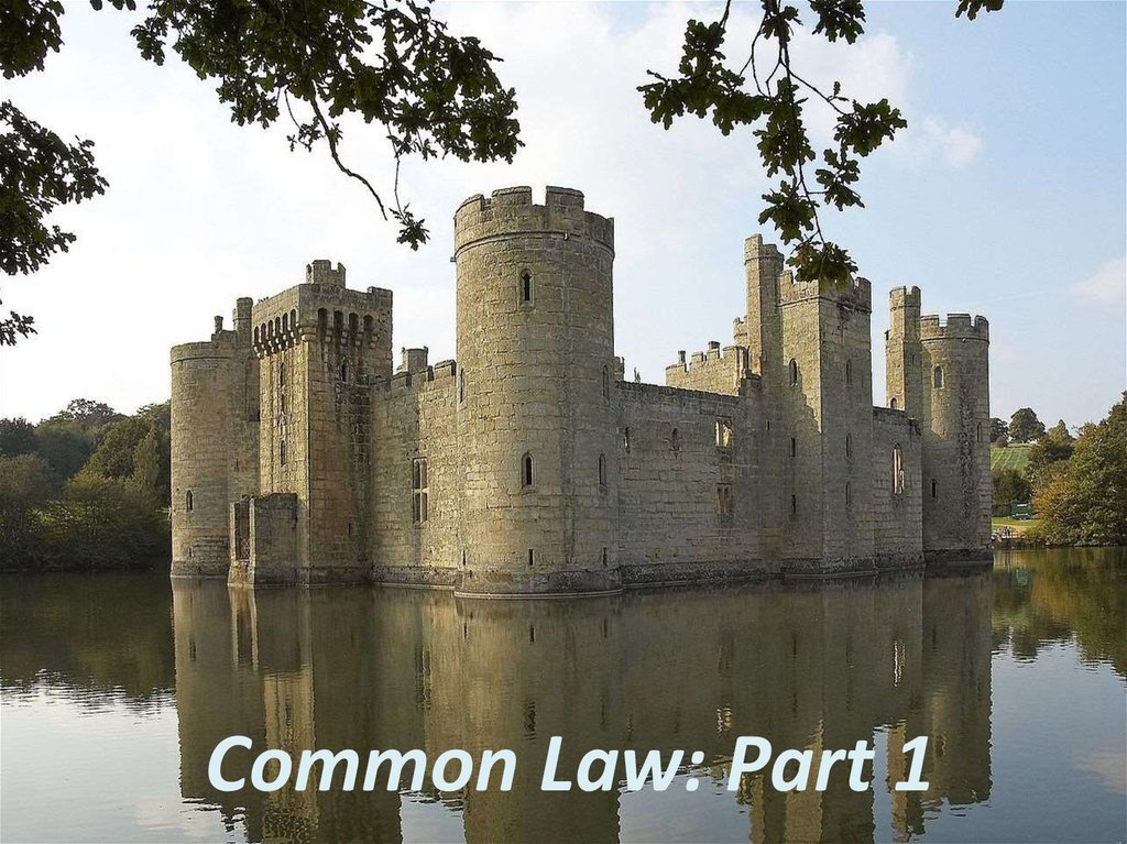 an introduction to common law as a legal system Introduction: this unit will provide you with a general introduction to legal english  exercise 1: reading exercise: the common law and the civil law system.