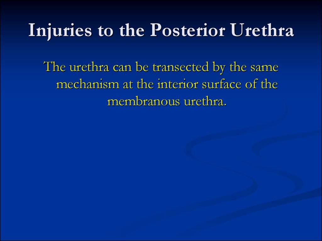 Injuries to the Posterior Urethra