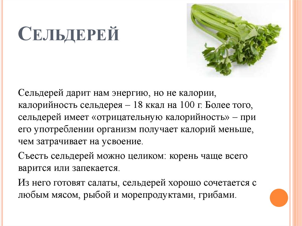Польза Сельдерей В Похудении. Полезные свойства сельдерея для похудения. Рецепты диетических блюд для похудения с сельдереем — супов, салатов, сока