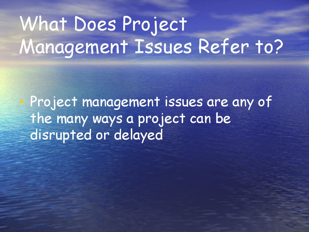 What Does Project Management Issues Refer to?