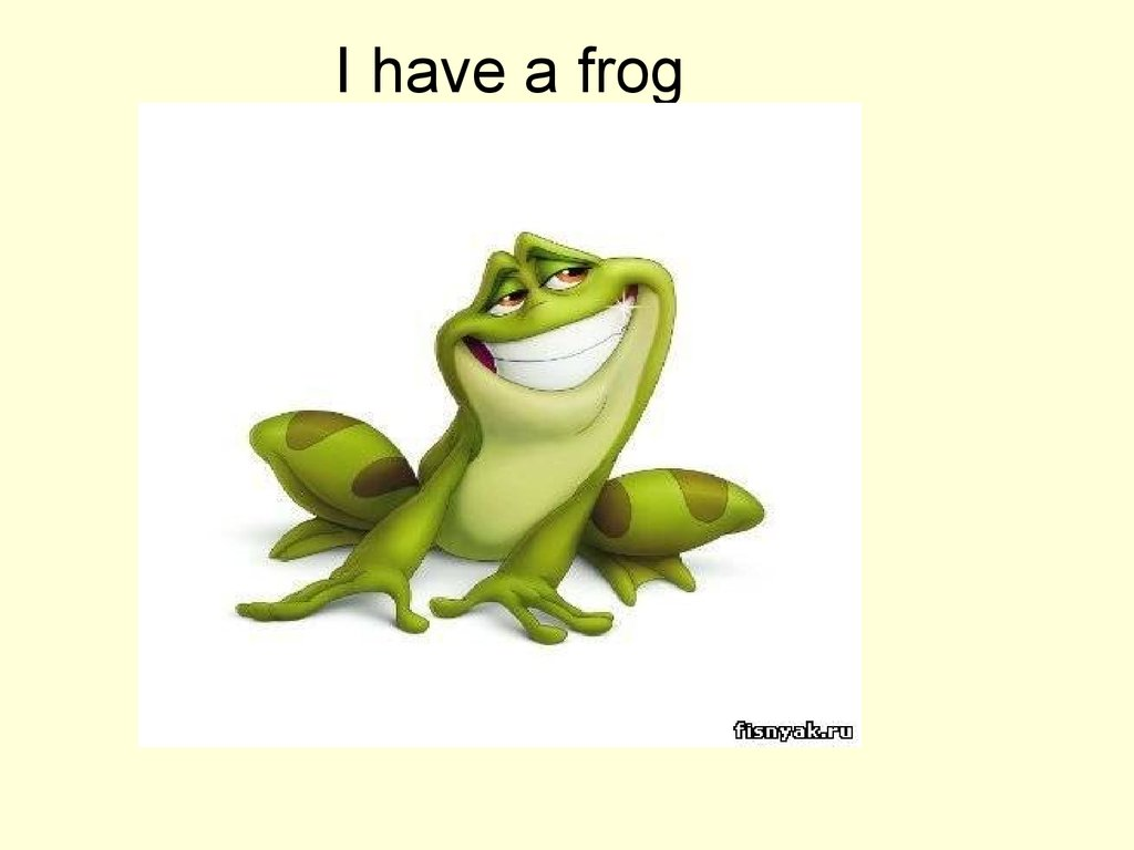 I have a frog