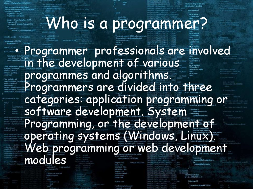 Who is a programmer?