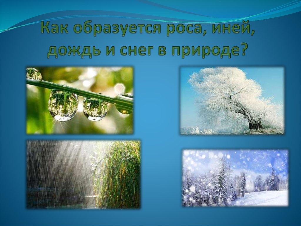 картинки как образуется роса