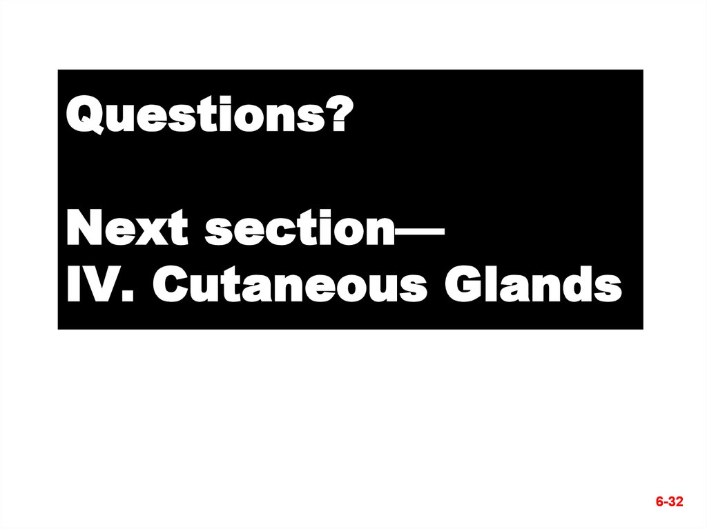 Questions? Next section— IV. Cutaneous Glands