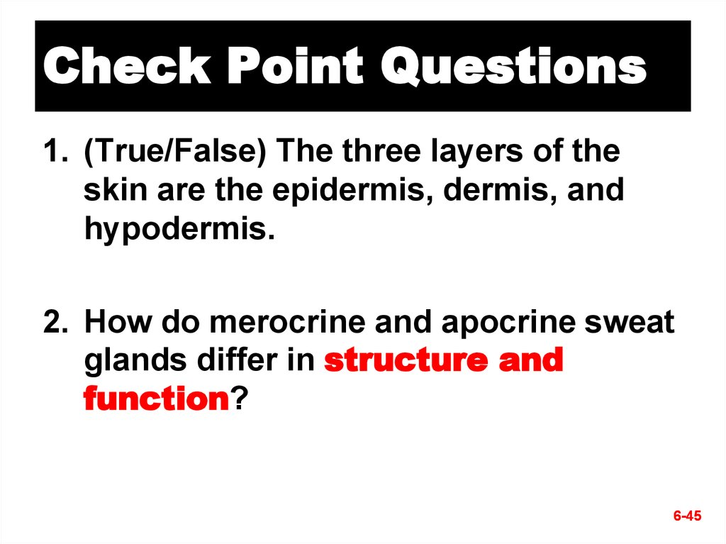 Check Point Questions