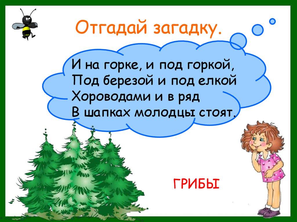загадки про лес с картинками полки акрила купить