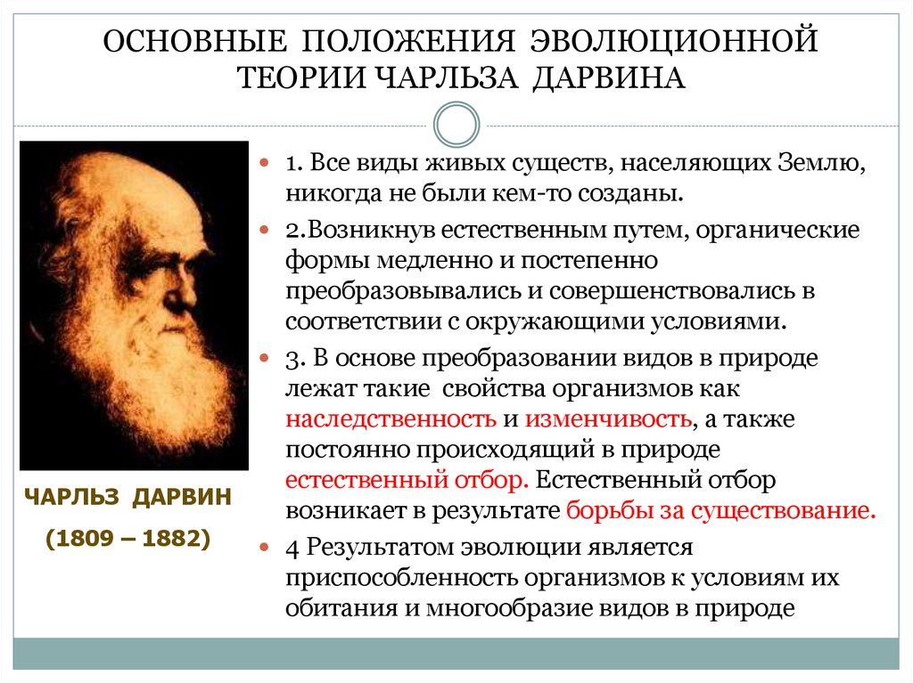 a biography of charles darwin the creator of evolution theory