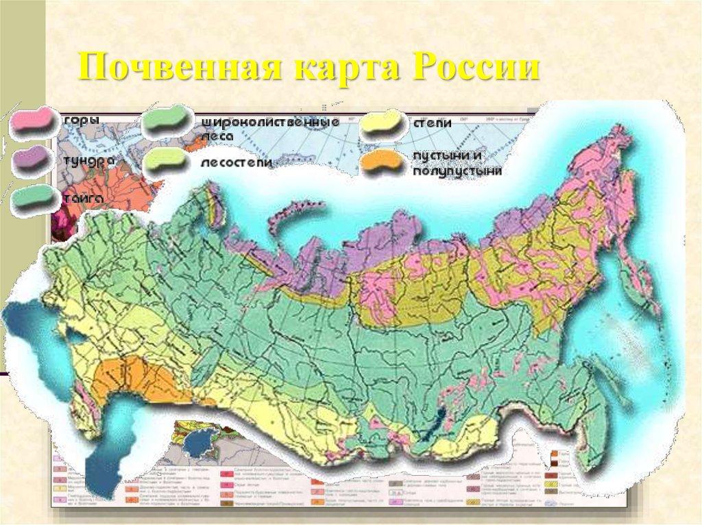 пустыни в россии географическое положение готового дизайна маникюра
