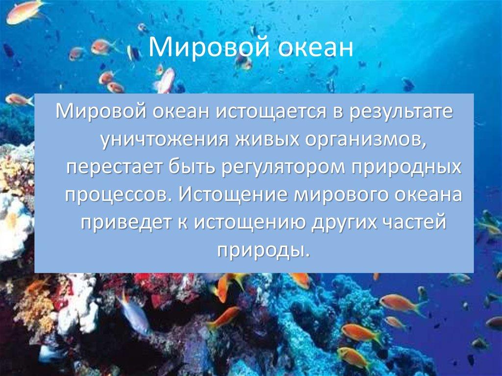 картинки мирового океана презентация вообще можно было
