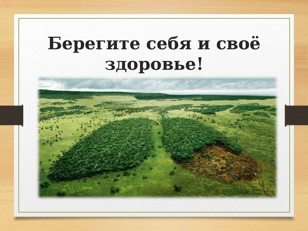 Кленовый лист, картинки берегите себя и свое здоровье