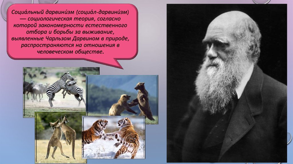 social darwinism Social darwinism was closely allied to eugenics contemporary theories of the evolutionary origin of morality can help to clarify why this is the case.