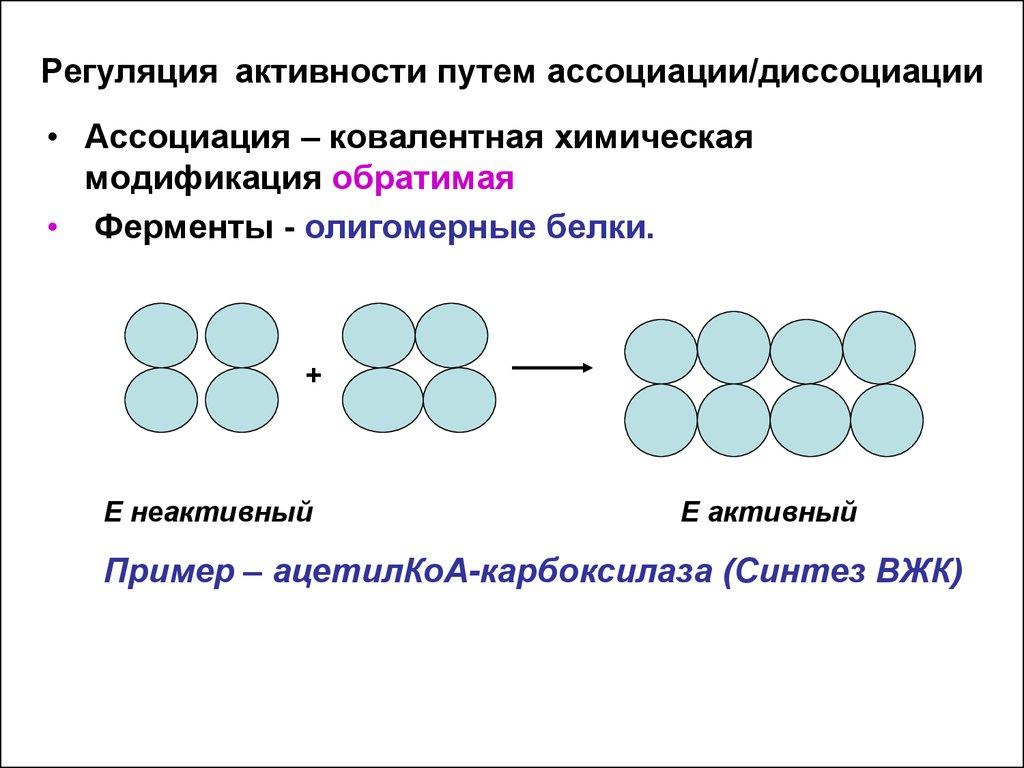 ebook Element Stamp Algorithm for Matrix Formulation