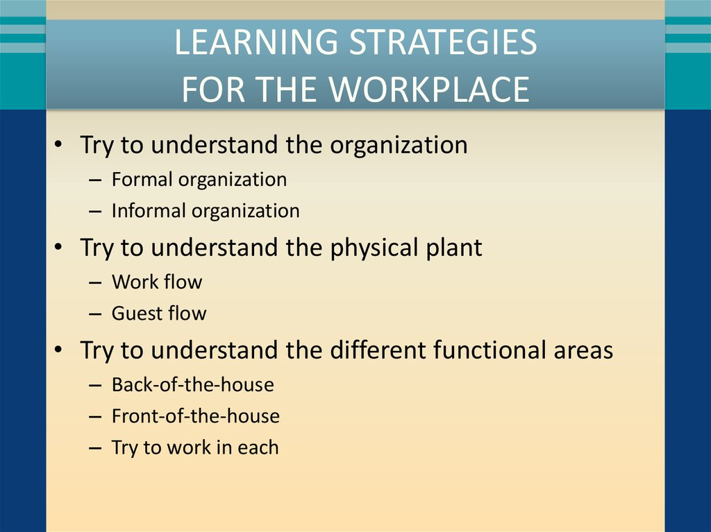 LEARNING STRATEGIES FOR THE WORKPLACE