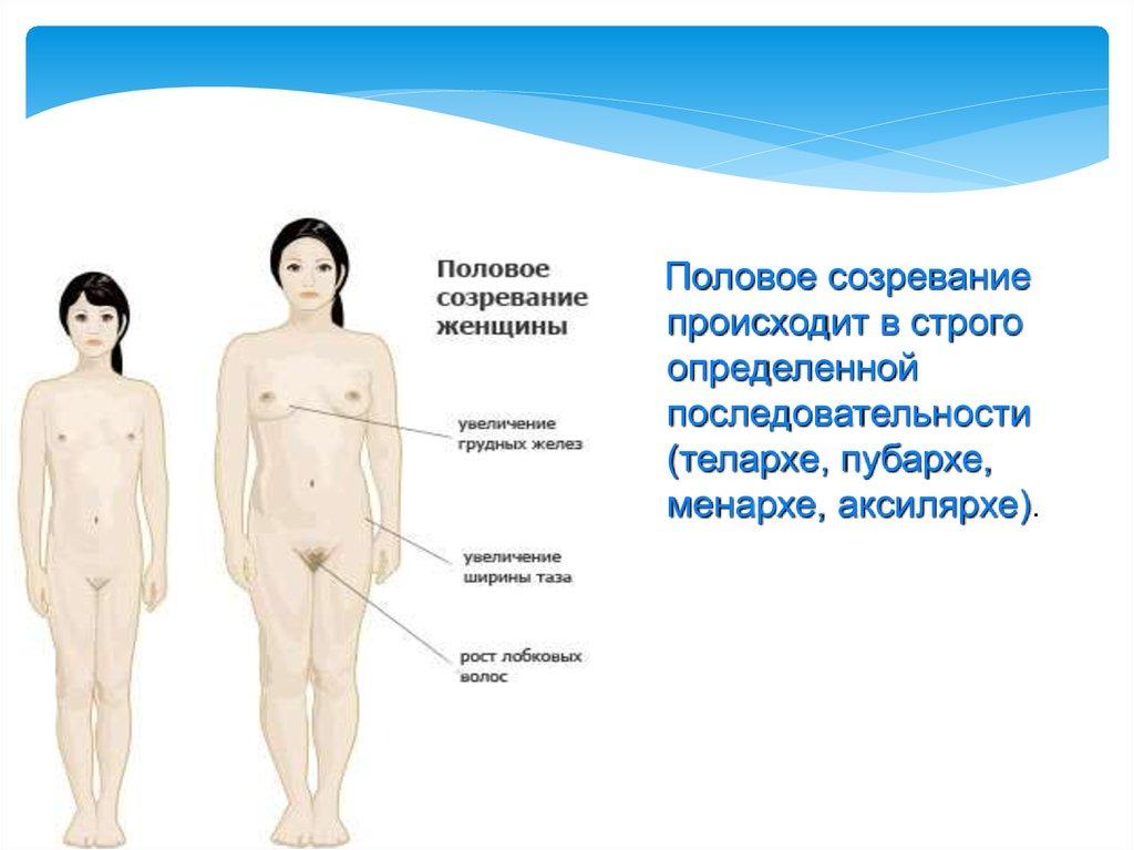 Основы детской гинекологии - презентация онлайн