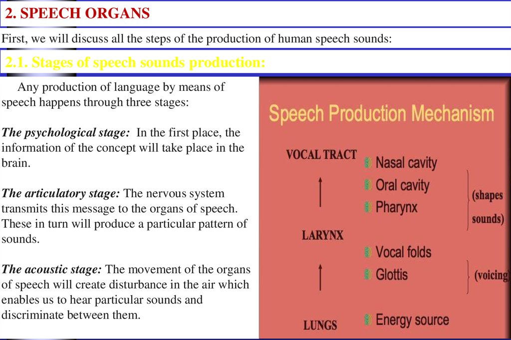 Any production of language by means of speech happens through three stages: The psychological stage: In the first place, the