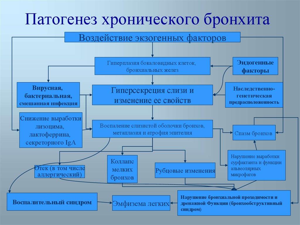 зарплат этиология патогенез и классификация хронического бронхита очередному этапу