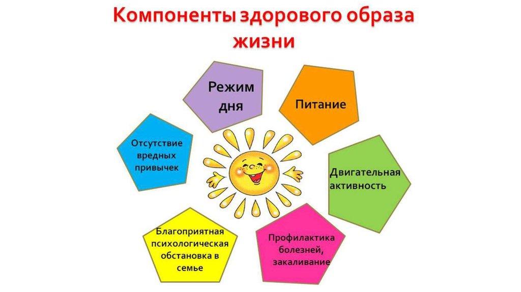 Основных компонентов культуры здорового образа жизни