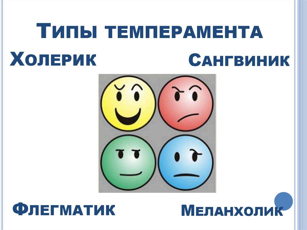 Психология темперамента в картинках